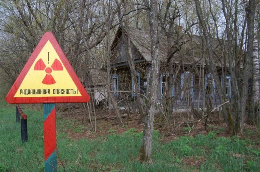Белоруссия открыла чернобыльскую зону отчуждения для туристов