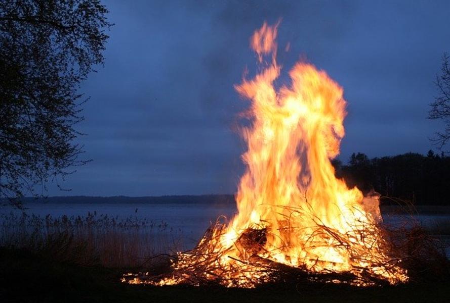 Фото Сибирь горит: площадь лесных пожаров достигла 60 тысяч гектаров 2