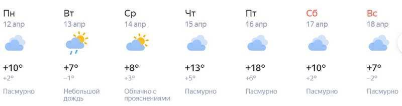 фото В Новосибирск на следующей неделе придёт потепление до +18 градусов 3