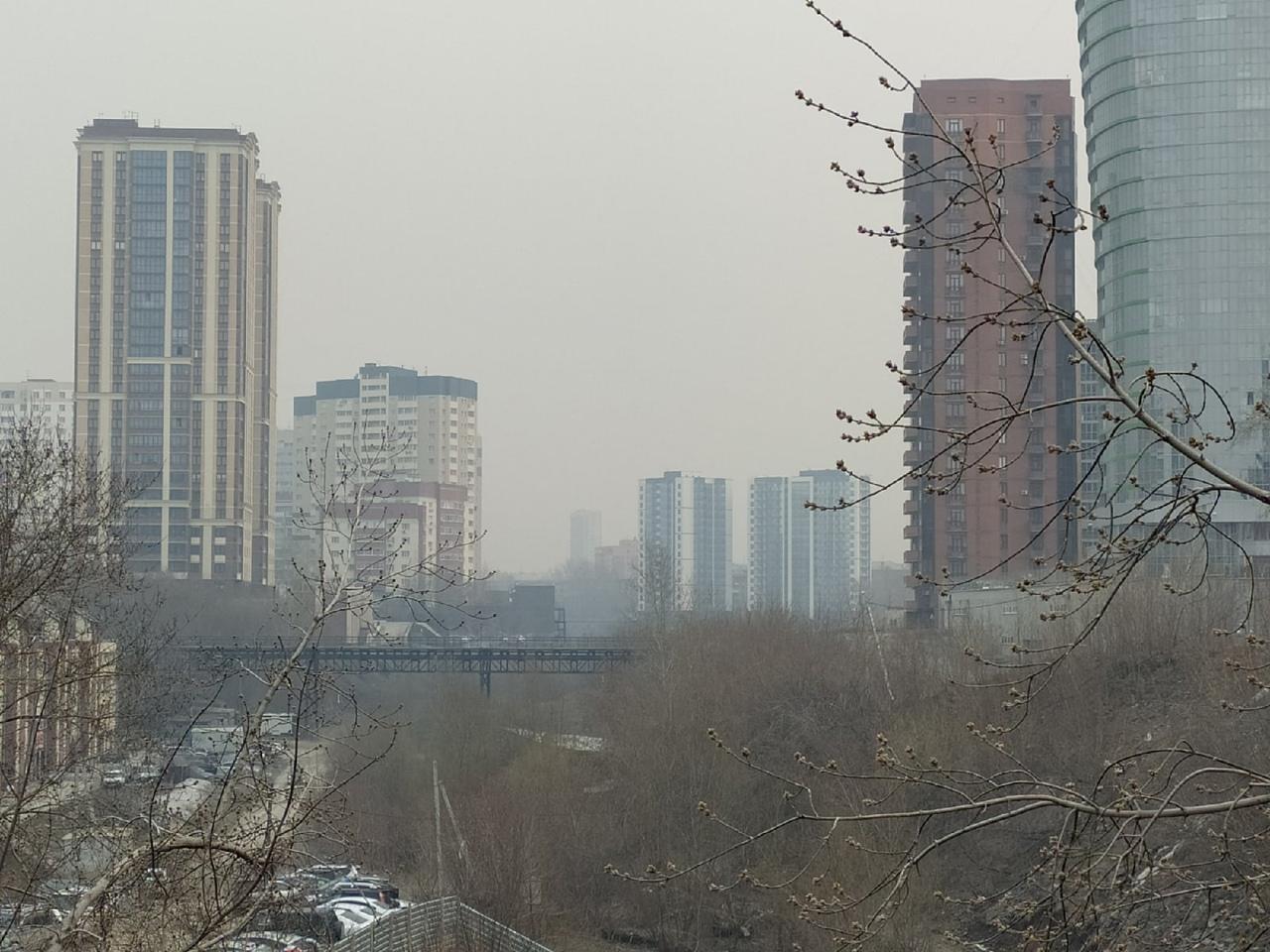 фото «Пыль столбом стоит – штрафовать нужно за такое»: 10 фото утонувшего в дыму Новосибирска 3
