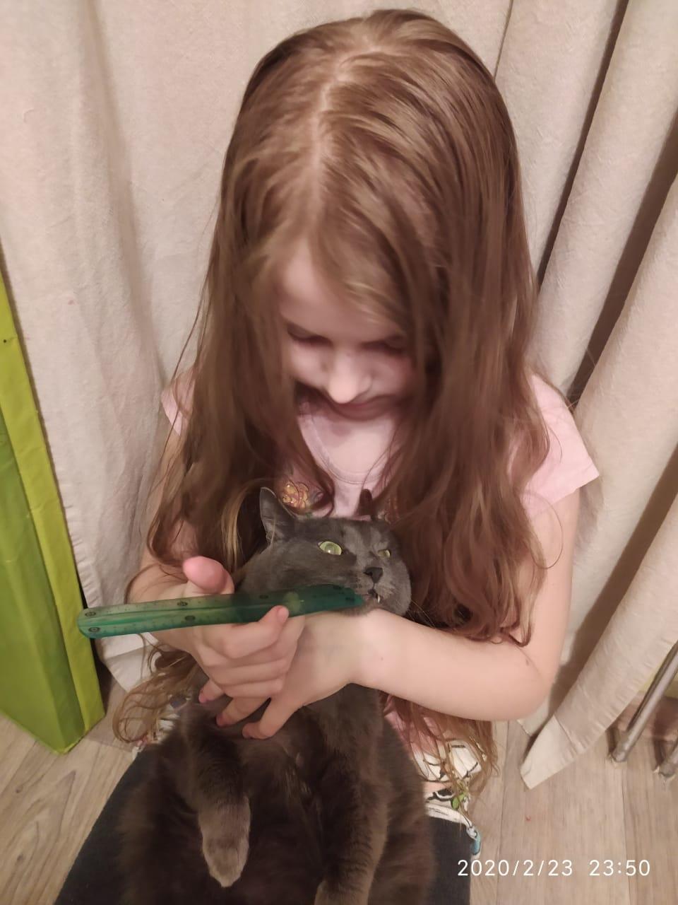 Фото «Чешите меня полностью»: как пятая «Главная кошка Новосибирска» занимается научной деятельностью и читает газеты 6