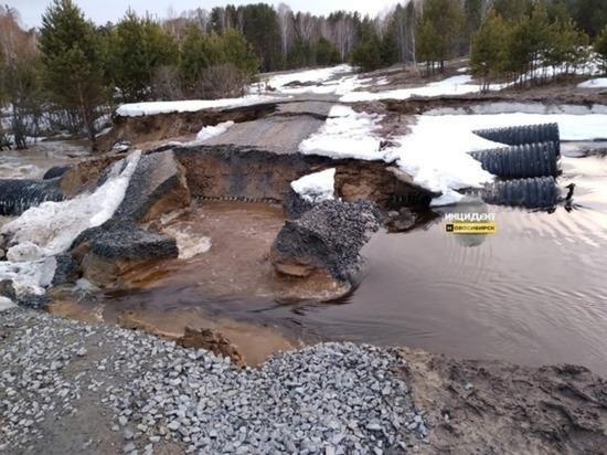 Фото Кинологов задействовали в поисках упавшего в реку под Новосибирском 6-летнего мальчика 2