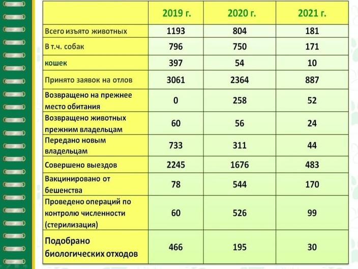 Фото «Кто нам дороже – дети или собаки?»: общественники Новосибирска рассказали о кадровом голоде в службе отлова 3