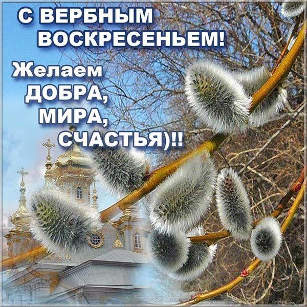Фото Вербное воскресенье 25 апреля: красивые открытки и душевные поздравления 20