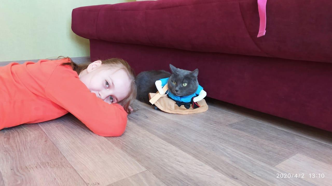 Фото «Чешите меня полностью»: как пятая «Главная кошка Новосибирска» занимается научной деятельностью и читает газеты 7