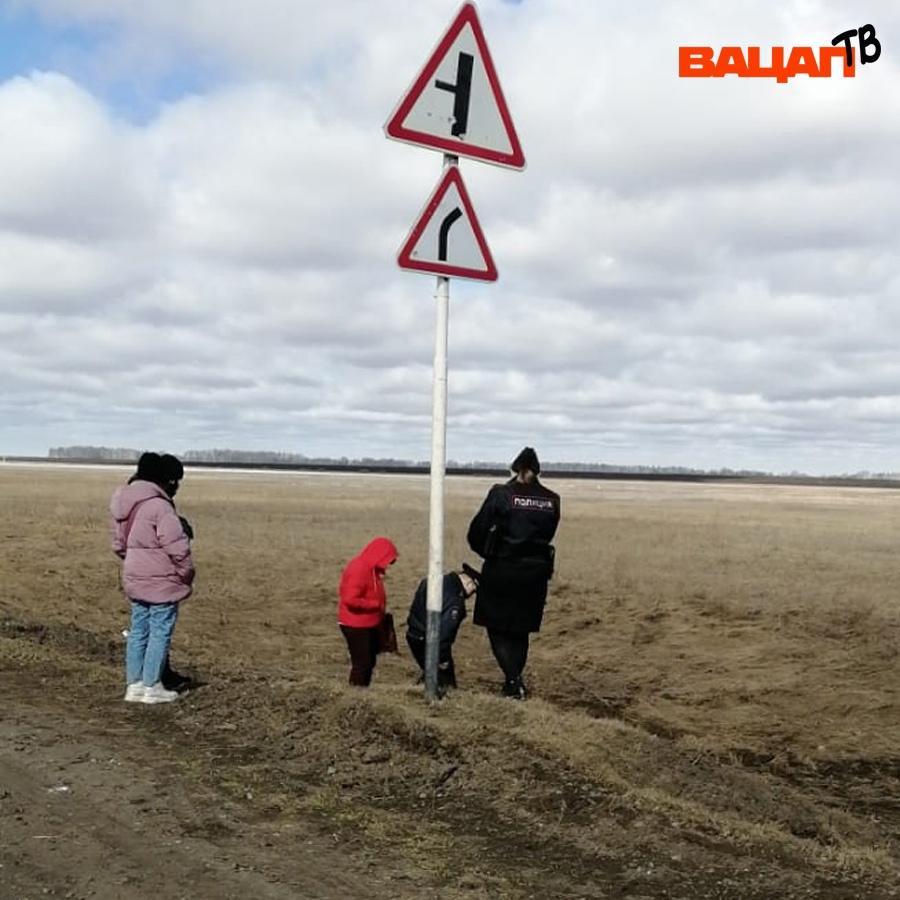 фото Догхантеры задушили четырёх собак возле детского лагеря в Новосибирской области 3