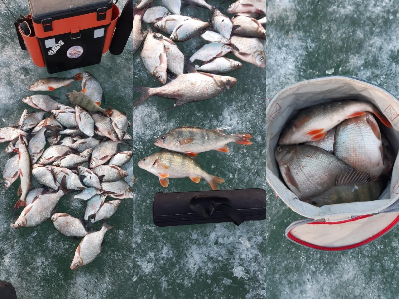фото Сибирские рыбаки закрыли сезон зимней рыбалки 2
