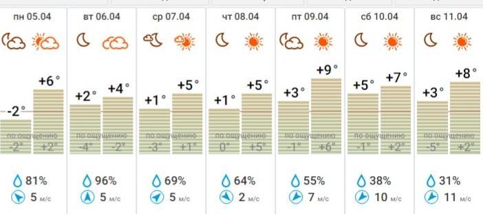 фото Плюсовая температура ожидается в Новосибирской области всю неделю 3
