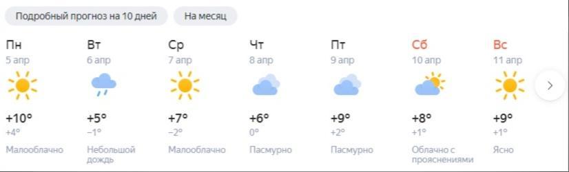 фото Плюсовая температура ожидается в Новосибирской области всю неделю 4