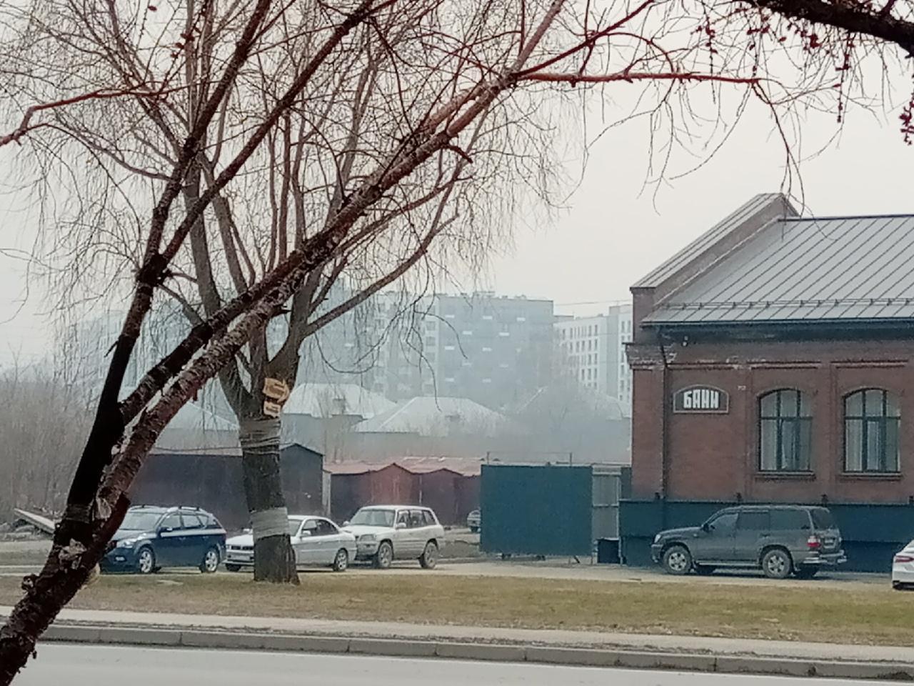 фото «Пыль столбом стоит – штрафовать нужно за такое»: 10 фото утонувшего в дыму Новосибирска 2