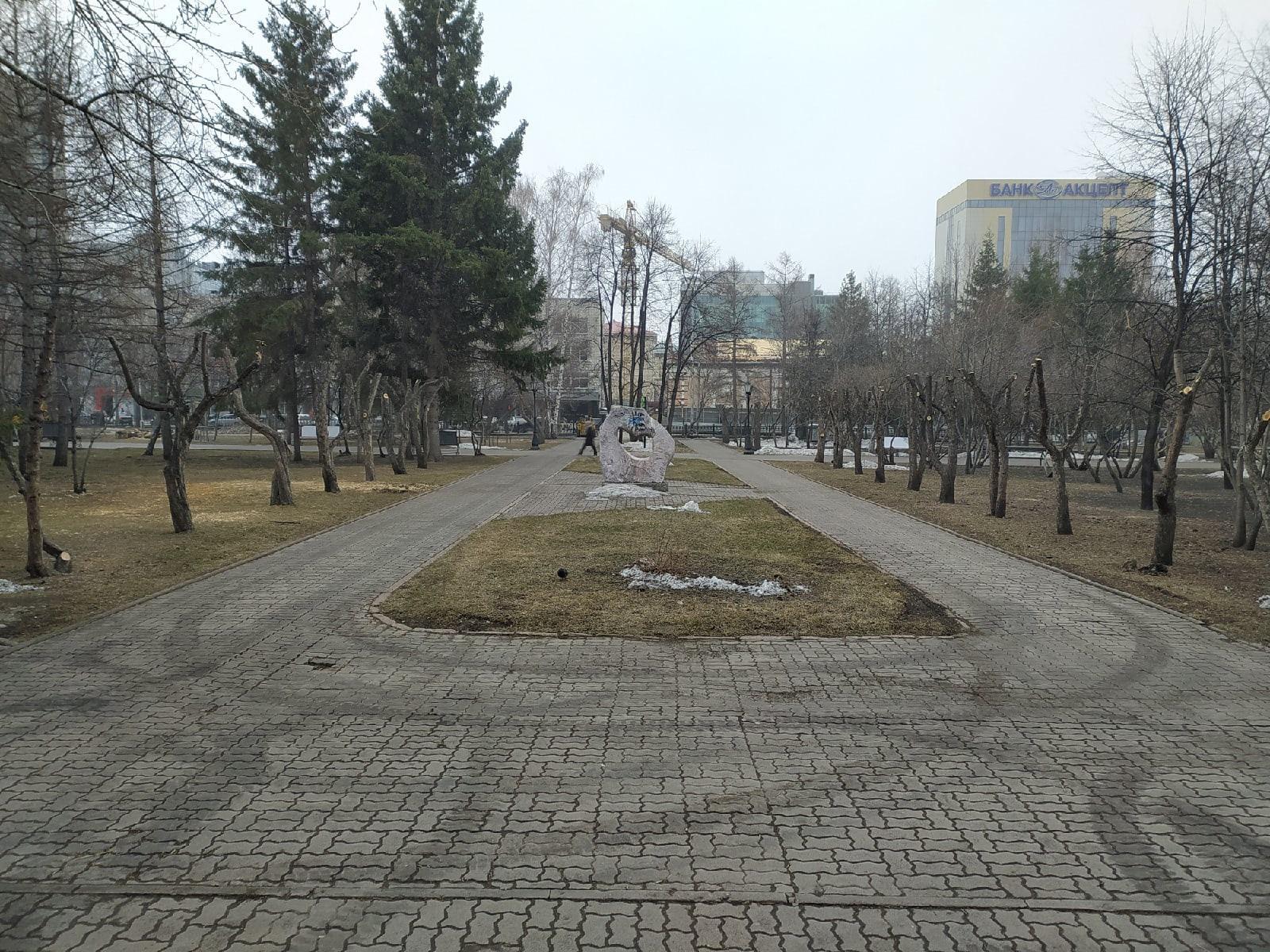 фото В Первомайском сквере Новосибирска обрезали деревья – как в фильме ужасов 6