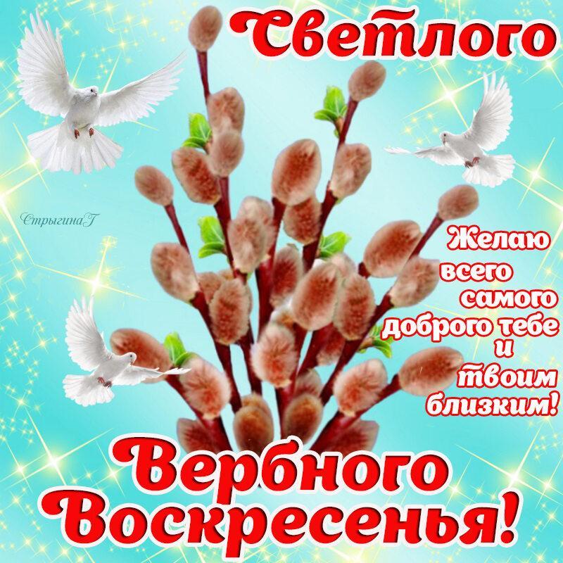 Фото Вербное воскресенье 25 апреля: красивые открытки и душевные поздравления 23