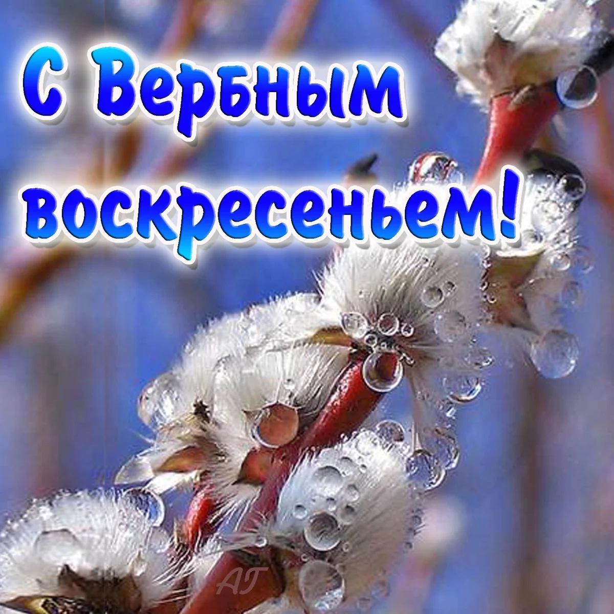 Фото Вербное воскресенье 25 апреля: красивые открытки и душевные поздравления 13