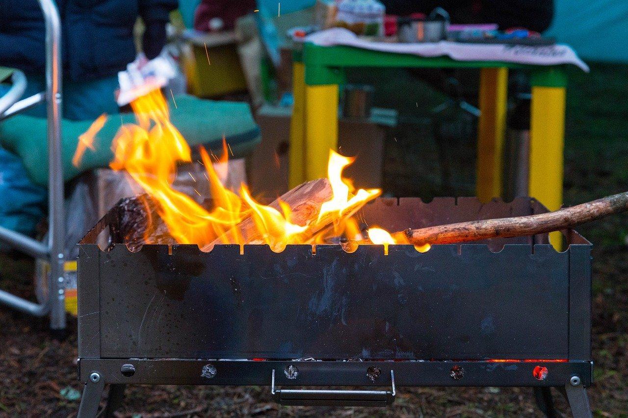 фото Майские шашлыки: где пожарить мясо в Новосибирске, если костры запрещены 3