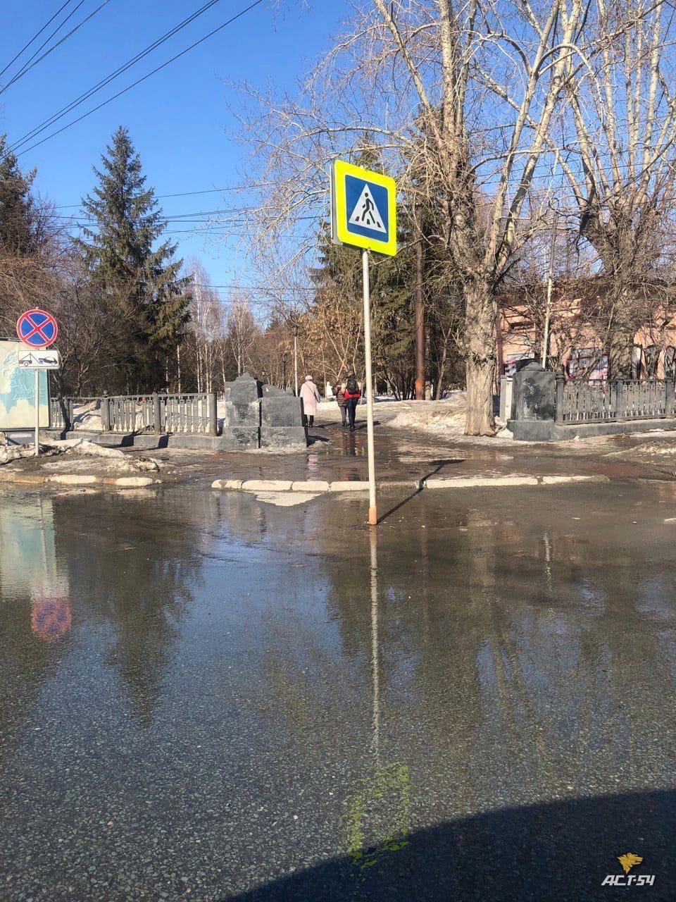 фото Новосибирцев возмутил знак пешеходного перехода посреди дороги 2