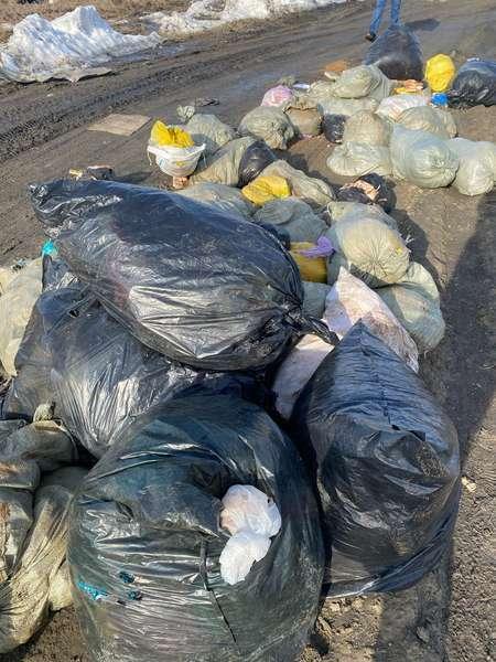 фото Мешки с останками свиней обнаружили на дороге под Новосибирском 2
