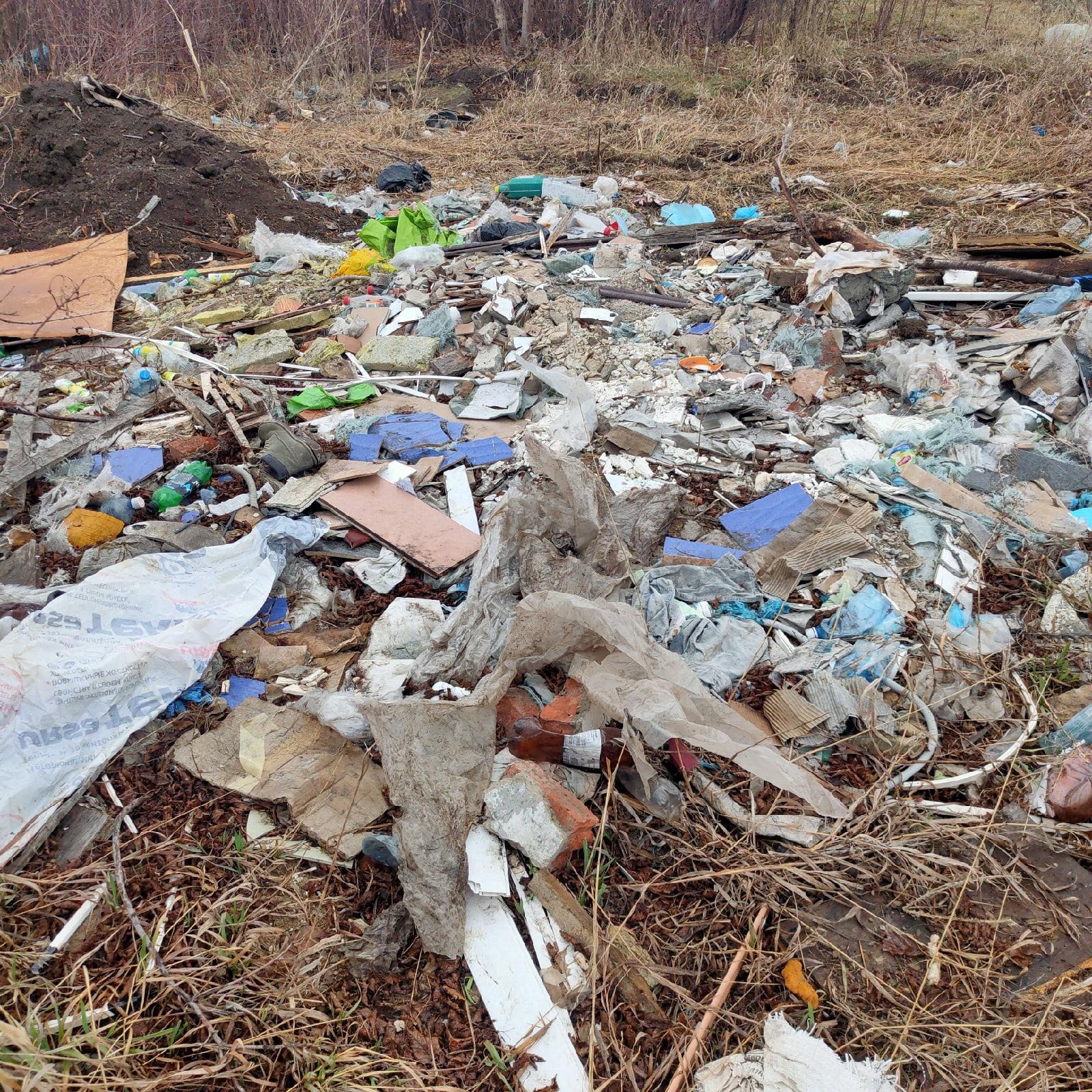 фото Возле аэропорта Омска обнаружена стихийная свалка 4