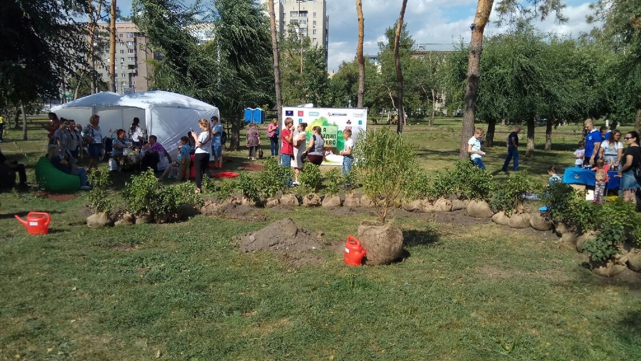 Фото Новосибирцы преобразили сквер за НОВАТом в рамках акции «Посади своё дерево» 2
