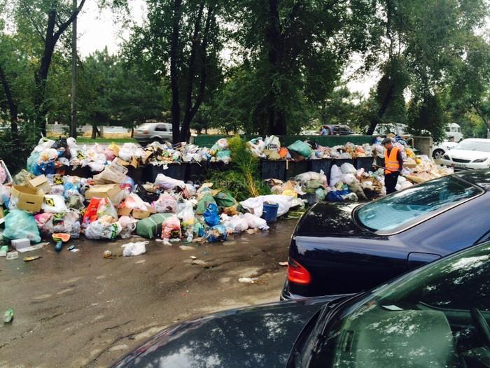 Фото Вонючая вода и горы мусора: названы жилищные проблемы россиян во время самоизоляции 2