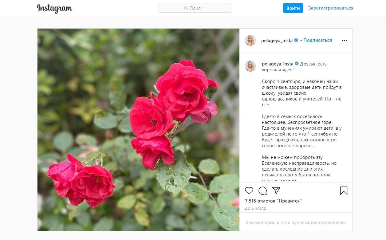 Фото Лучше переведите детям: Пелагея призвала не покупать цветы учителям на 1 сентября 2