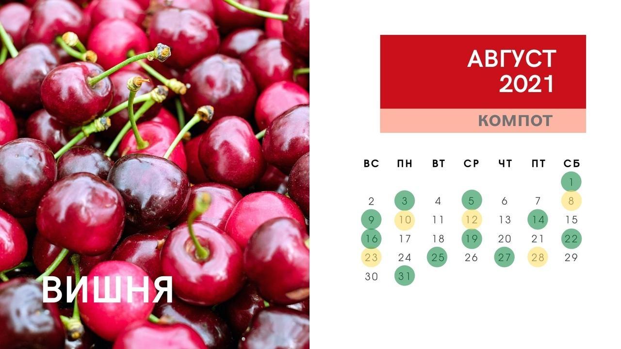 Фото Календарь консервирования и заготовок на зиму в августе 2021 года: огурцы, кабачки, помидоры, малина, вишня 6