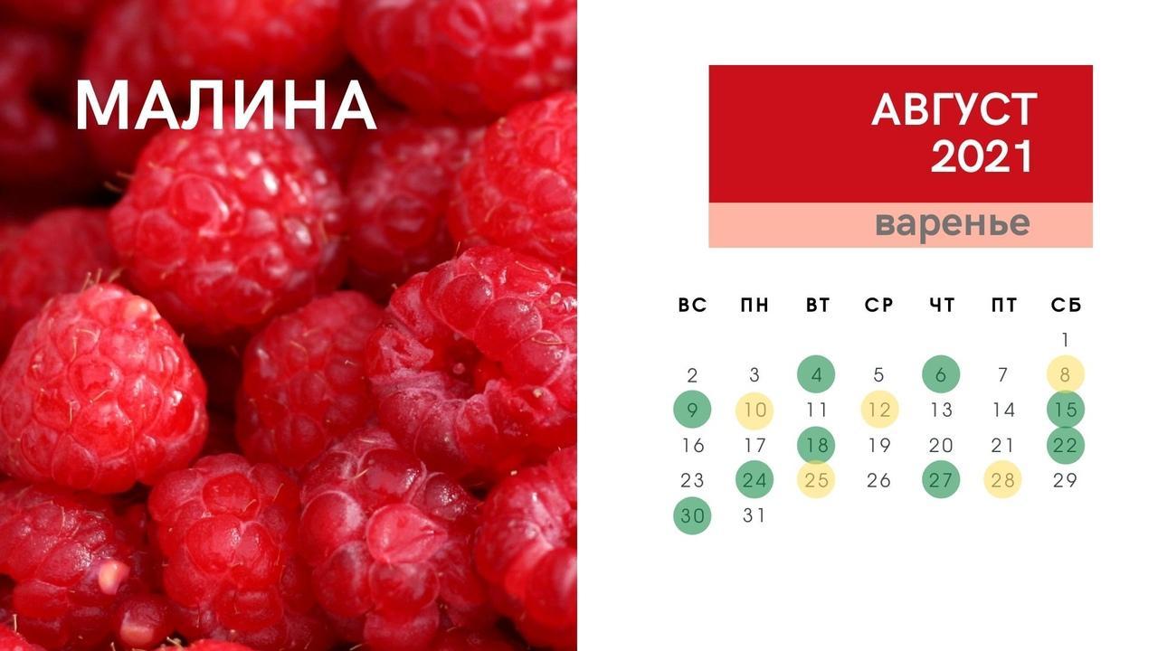 Фото Календарь консервирования и заготовок на зиму в августе 2021 года: огурцы, кабачки, помидоры, малина, вишня 5