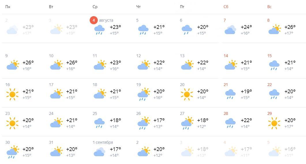 Фото Весь август - проливные дожди: синоптики сделали прогноз погоды на конец лета в Новосибирске 2