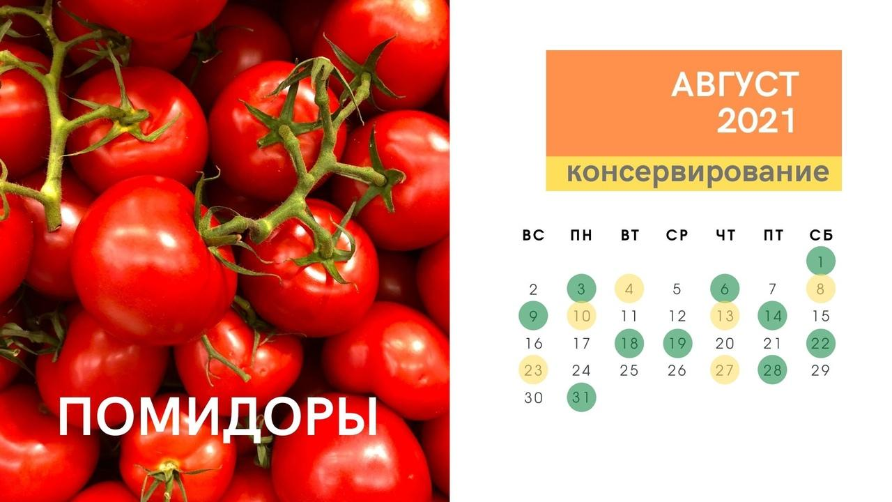 Фото Календарь консервирования и заготовок на зиму в августе 2021 года: огурцы, кабачки, помидоры, малина, вишня 3
