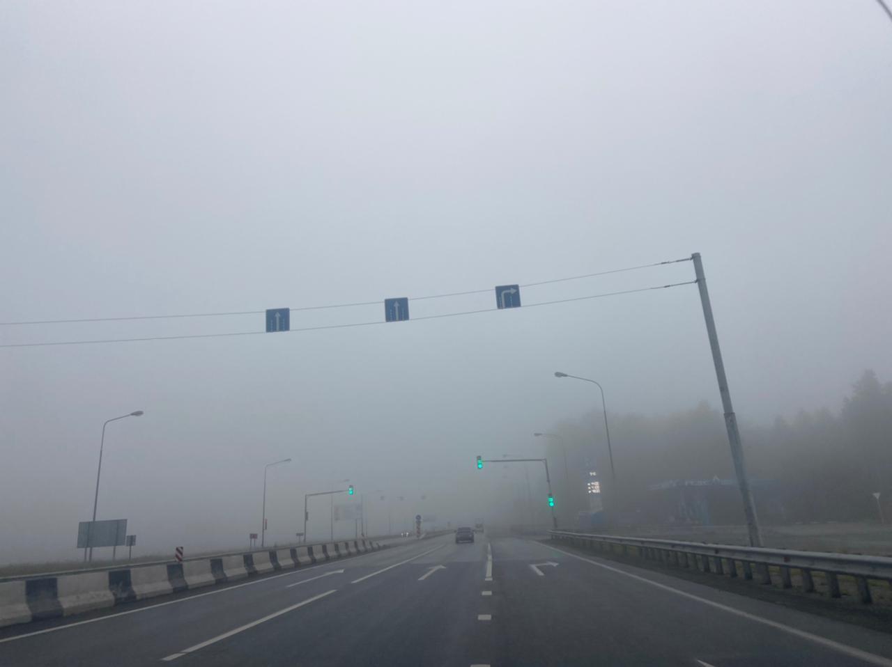 Фото «Выглядит жутковато»: новосибирцы делятся в соцсетях мистическими фото утреннего тумана 8