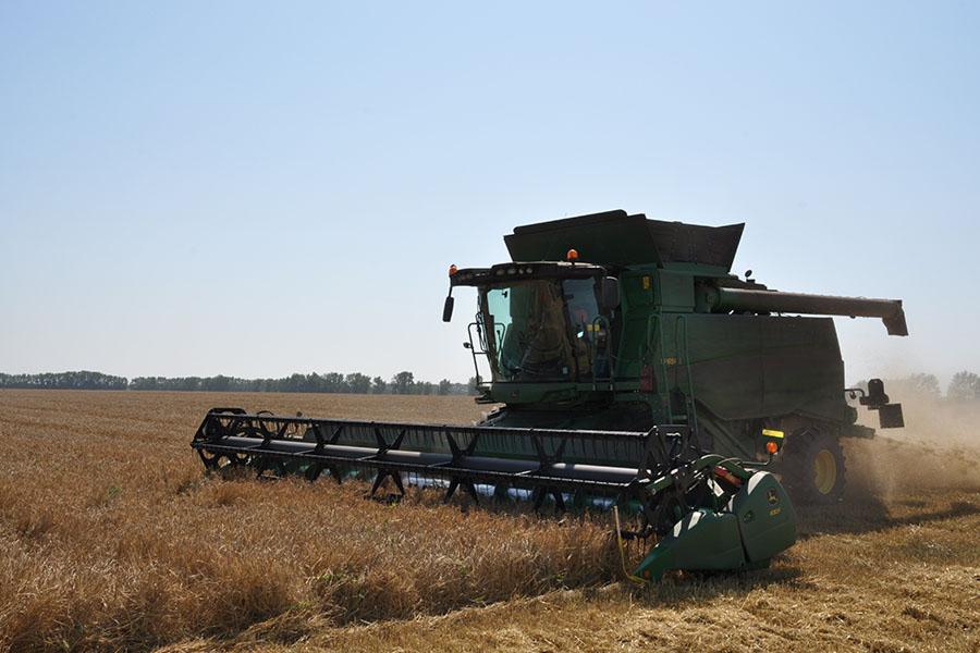 Фото Рекордный урожай зерновых планируют собрать в Новосибирске 3