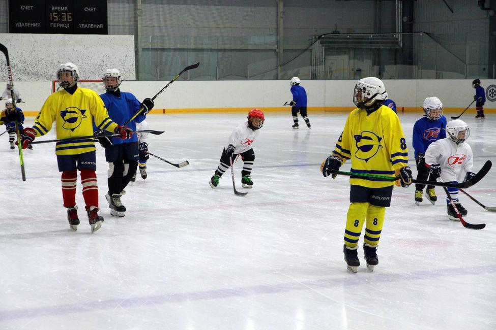 Фото Серию открытых тренировок для детей провели бронзовые призёры КХЛ в Новосибирской области 2