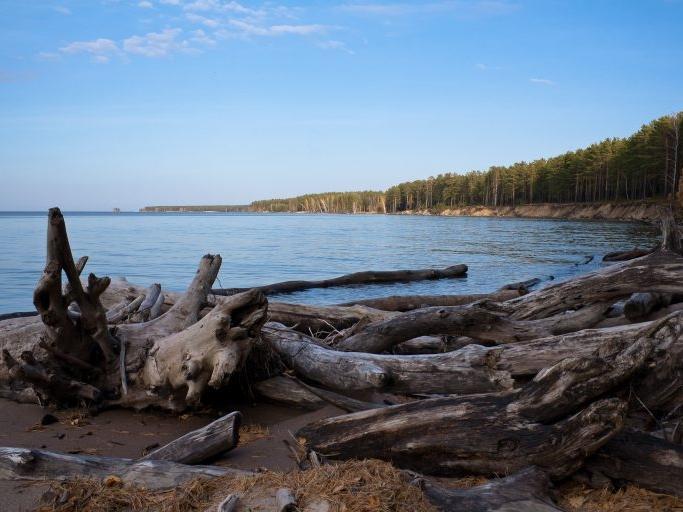 Фото Самые красивые места в радиусе 100 км от Новосибирска для туризма 6
