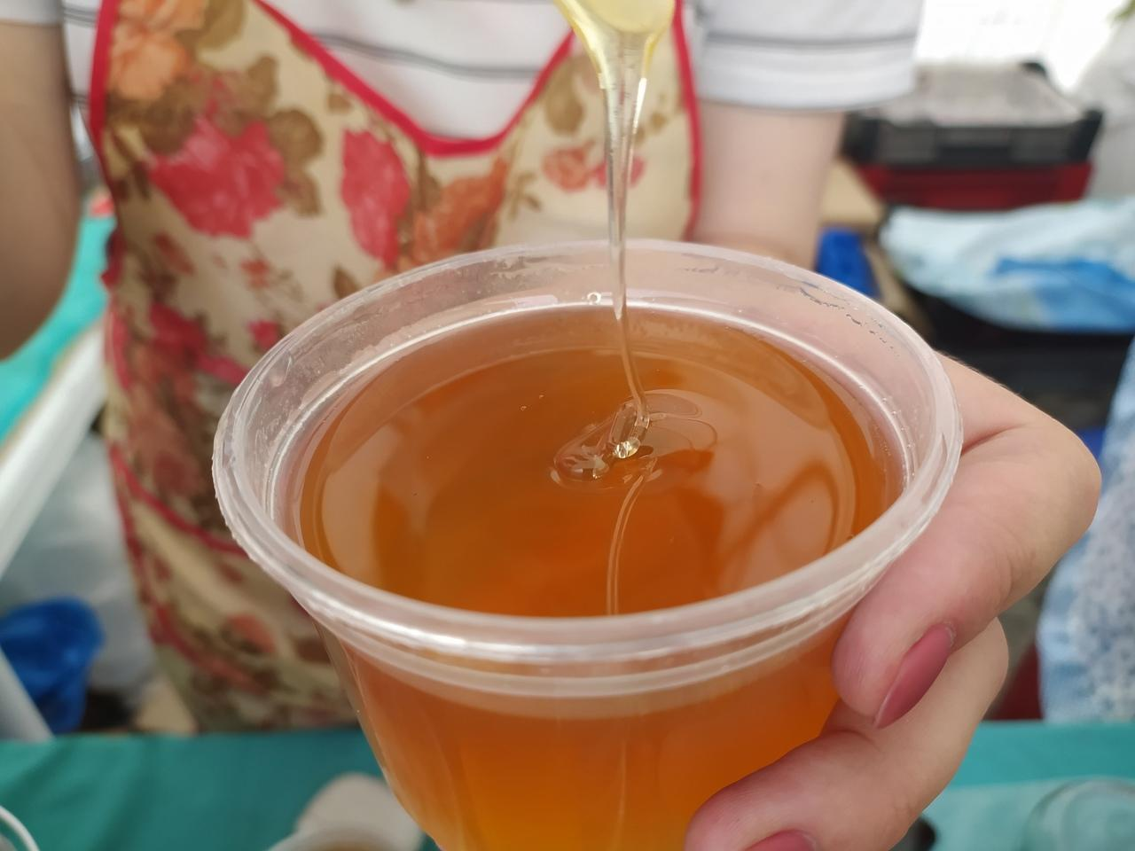 Фото Лизнуть и поставить на весы: в Новосибирске пасечники раскрыли секреты настоящего мёда 3
