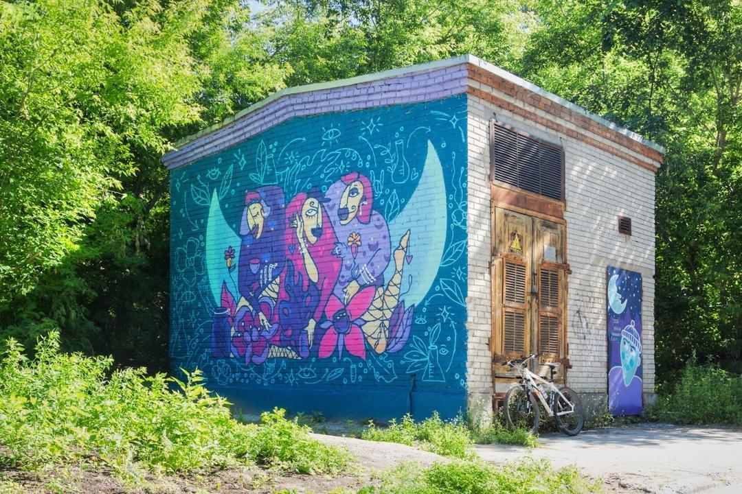 Фото Граффити новосибирских художников хотят закрасить в Академгородке 3