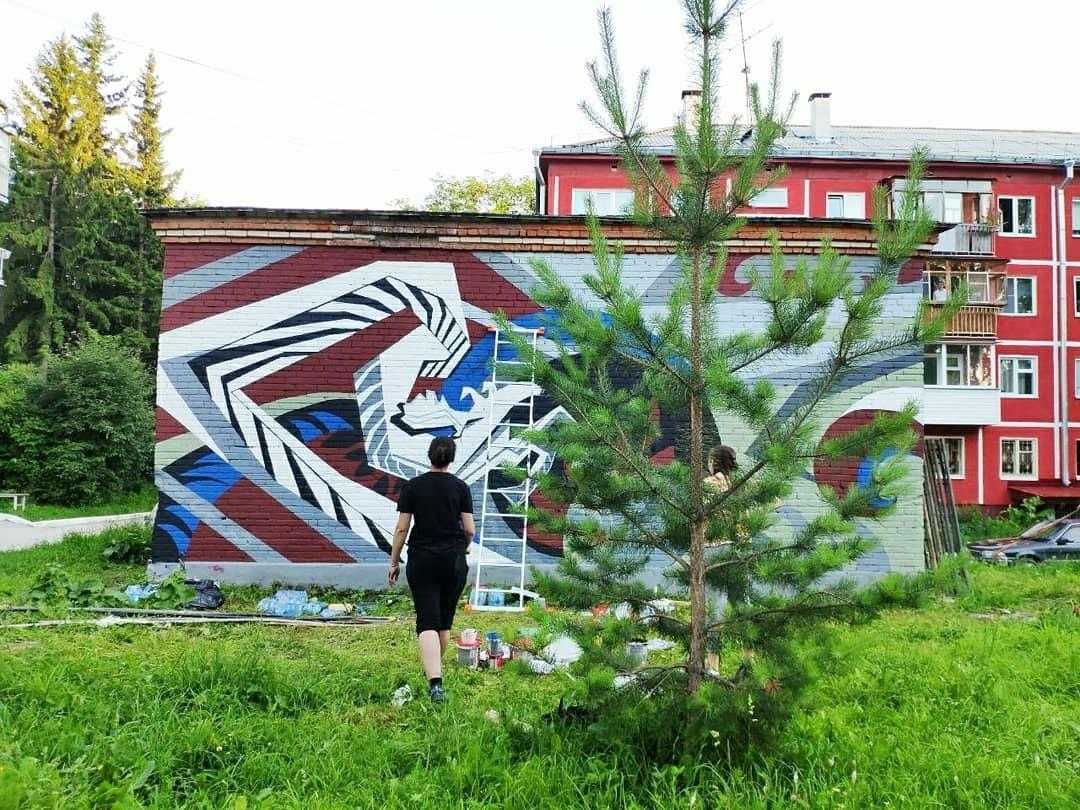 Фото Граффити новосибирских художников хотят закрасить в Академгородке 4