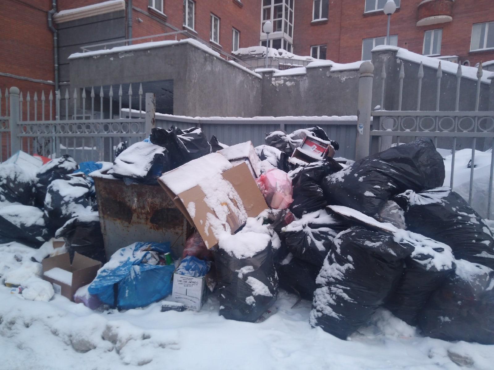 Фото Предновогодний мусорный коллапс возник во дворах Новосибирска: жители взмолились срочно вывезти переполненные баки 2