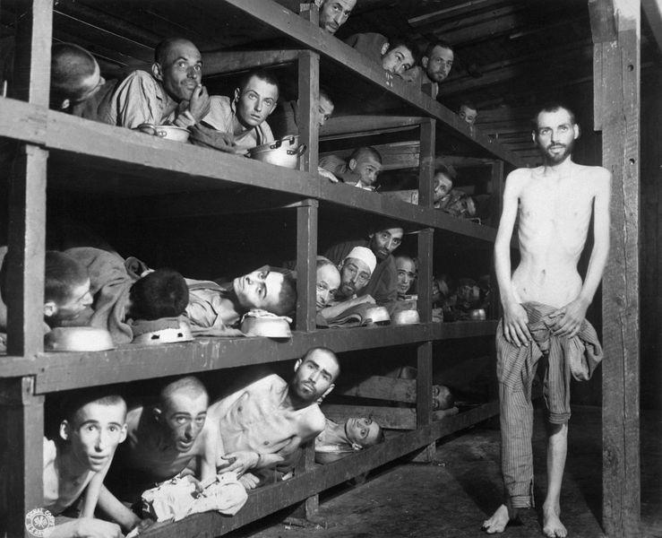 фото Герой сопротивления: как новосибирец подготовил восстание в концлагере 6