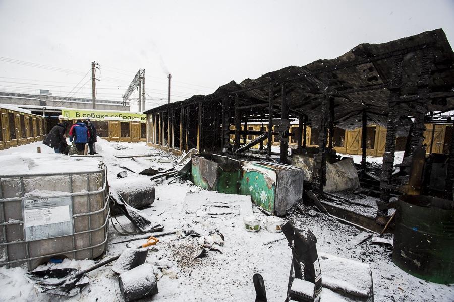 фото Вой стоял оглушительный: страшные подробности пожара в новосибирском приюте, где заживо сгорели собаки 2
