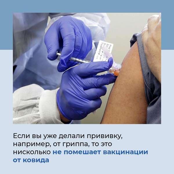 фото Правила вакцинации от коронавируса в картинках опубликовало правительство в Новосибирске 4