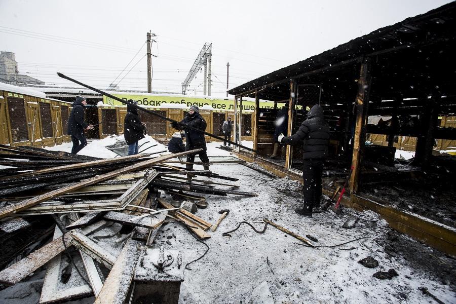 фото Вой стоял оглушительный: страшные подробности пожара в новосибирском приюте, где заживо сгорели собаки 9