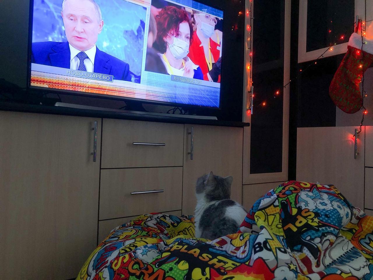 Фото Путин на экране: как котики, депутаты и дольщики в Новосибирске смотрят большую пресс-конференцию президента 10