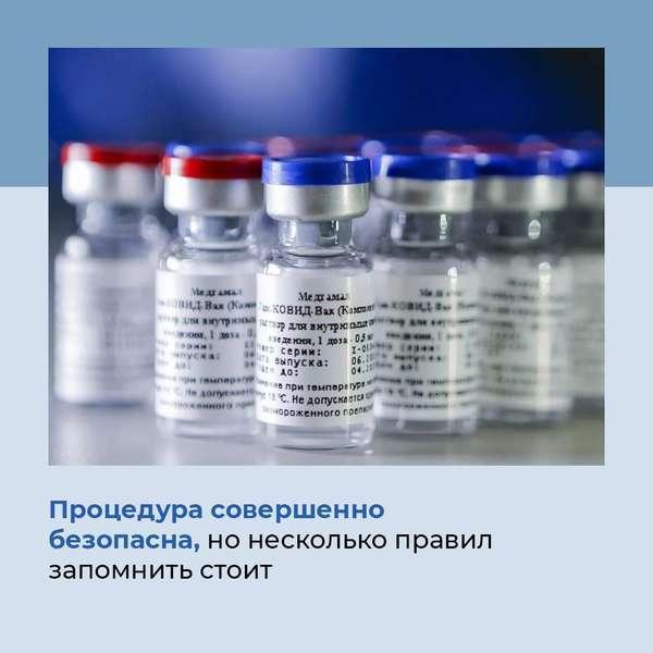 фото Правила вакцинации от коронавируса в картинках опубликовало правительство в Новосибирске 2