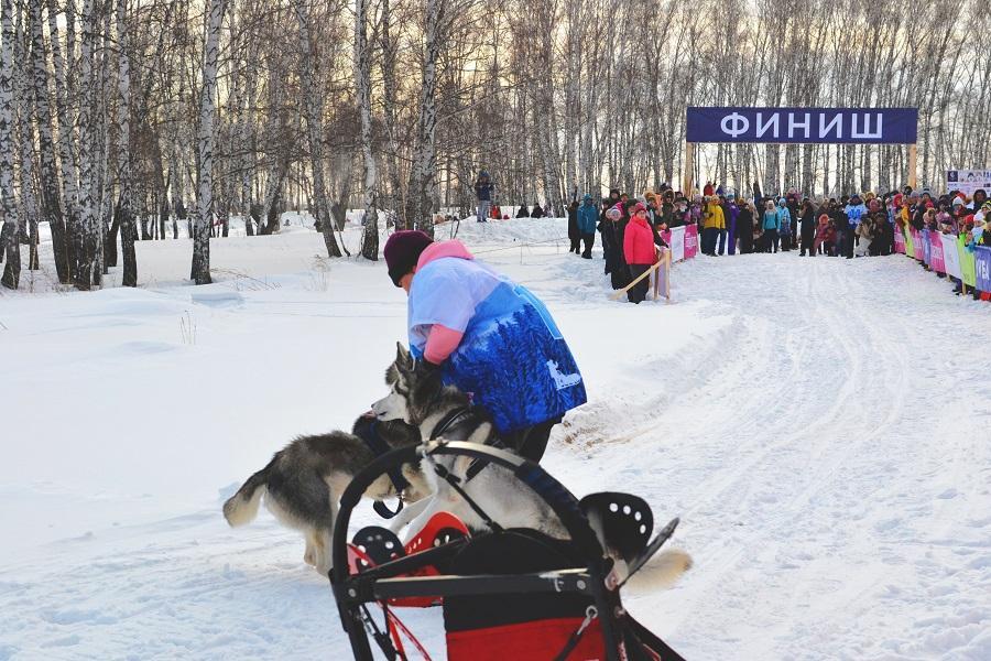 фото Под Новосибирском прошло самое доброе мероприятие 8