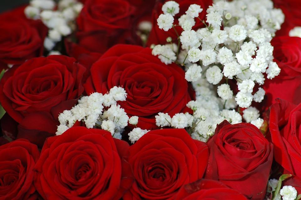 Фото Лайфхак дня: как выбрать цветы на 14 февраля 2