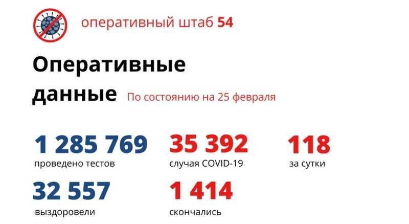 фото Коронавирус в Новосибирске: количество умерших от COVID-19 к 26 февраля 2021 года 2