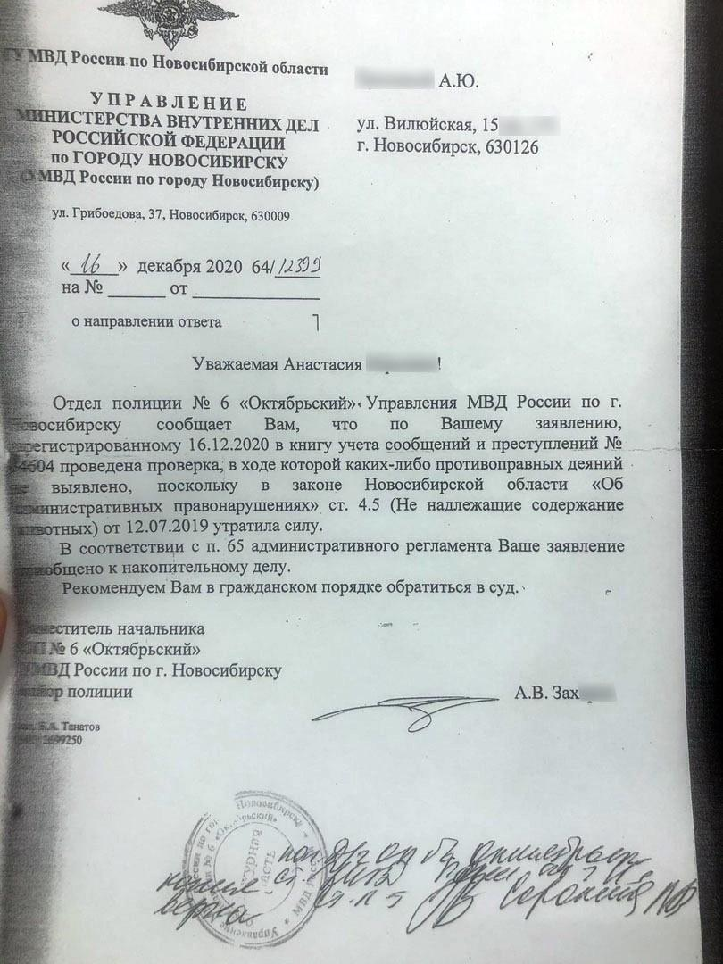 Фото «Откусил лапу и чуть не загрыз»: стаффордширский терьер без намордника нападает на людей и животных в Новосибирске 3