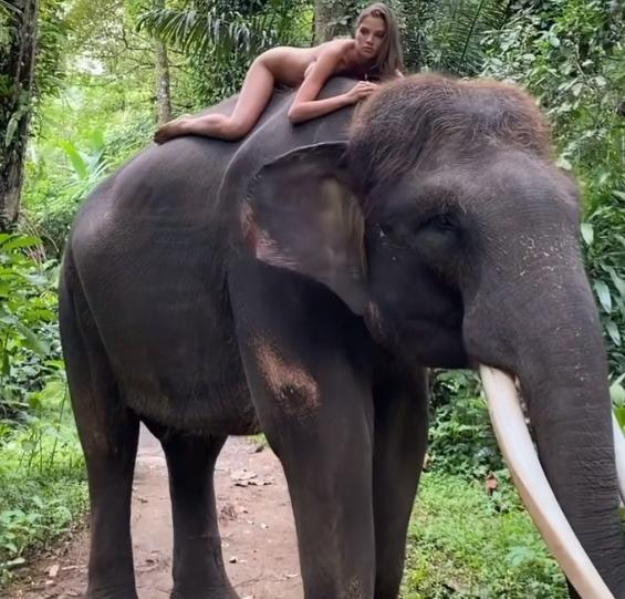 Фото «Он же колючий»: голая дочь теннисиста Кафельникова прокатилась на слоне 2