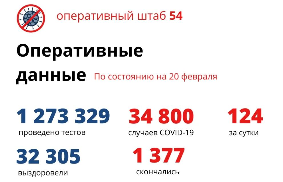 Фото Коронавирус в Новосибирске: количество умерших от COVID-19 к 21 февраля 2021 года 2