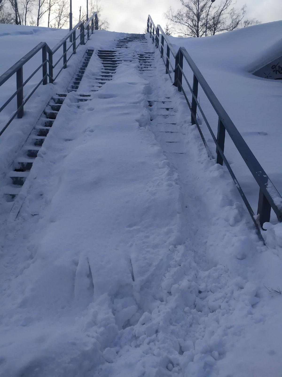 Фото «Горка смерти»: новосибирцев возмутили нечищеные лестницы на остановке «Бугринская роща» 2