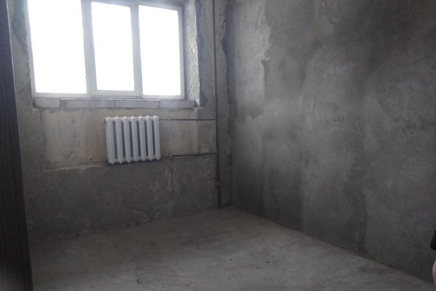 Фото Волонтёры просят новосибирцев помочь обустроить новый дом для кошек 3
